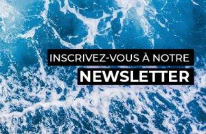 newsletter inscription